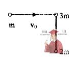 МР38, Рис. 7.5 - На гладком столе покоятся точечные массы 3m и 2m
