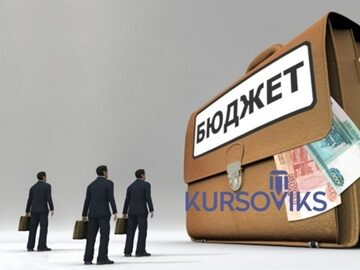 бюджетна-діяльність